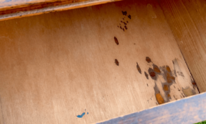 Slight damage and stains in the drawers which need a stain blocker